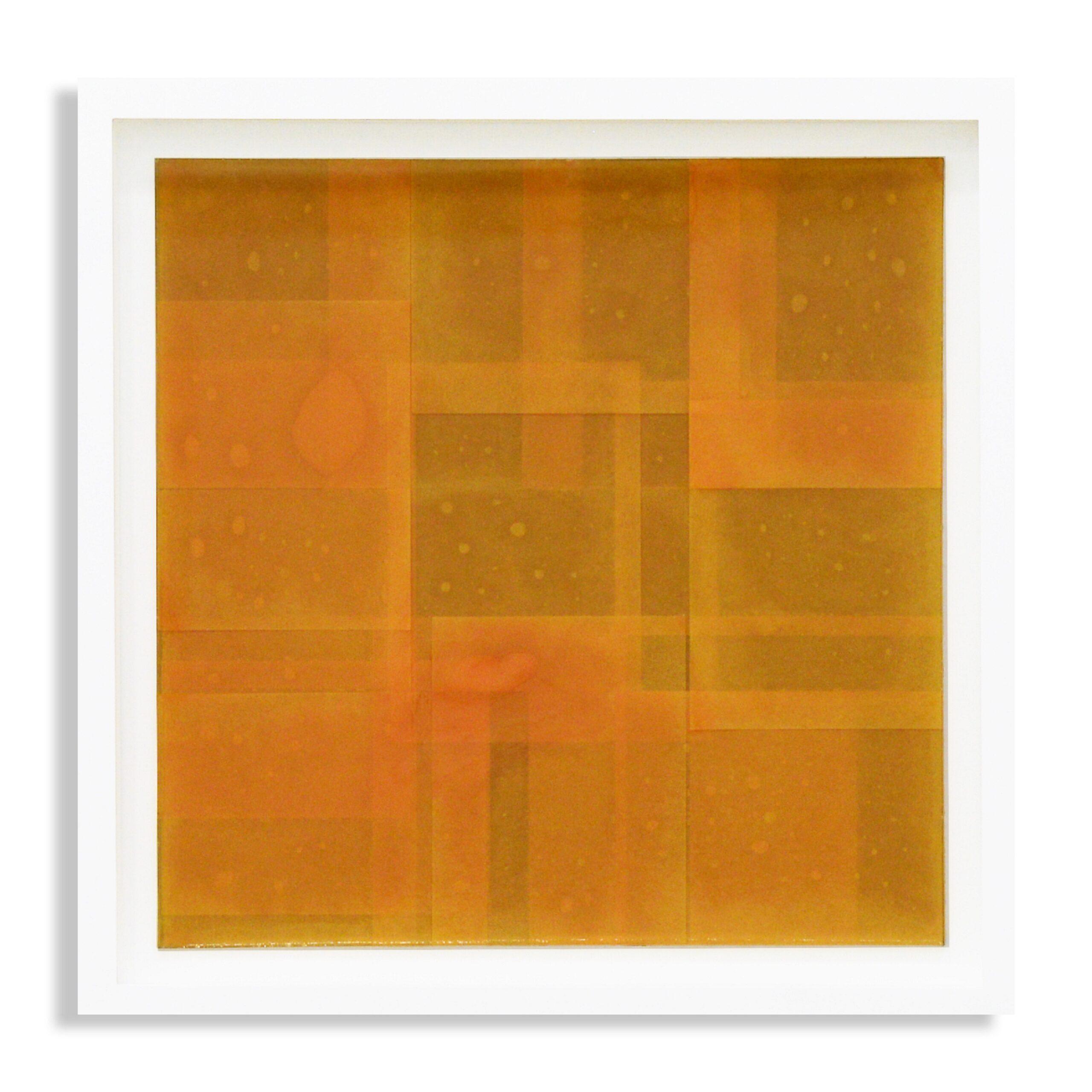 Julian Cording - On the perfection underlying life orange